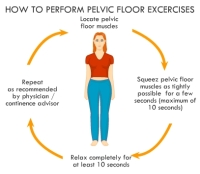 Pelvic Exercise Australia
